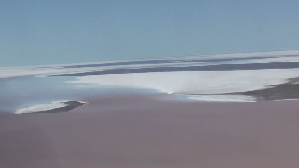 Water in Lake Eyre 2016 filled with life
