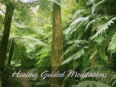Tree healing and grounding meditation. Enchanted Rainforest Guided Meditation. When we meditate with them, the aura of the trees heals us.