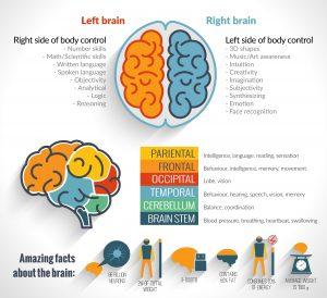 Benefits of Guided Meditation Effect on Amygdala, Meditation Effects on Brain and Body Health