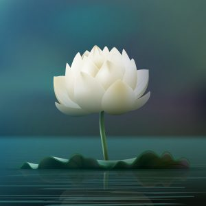 Meditation Connects you to the Soul. Healing Benefits of Guided Meditation